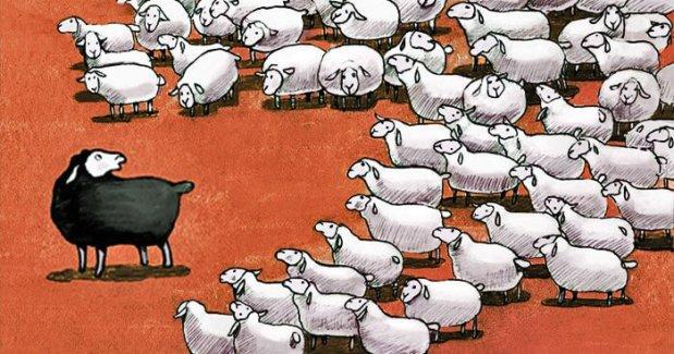 herdfeature2