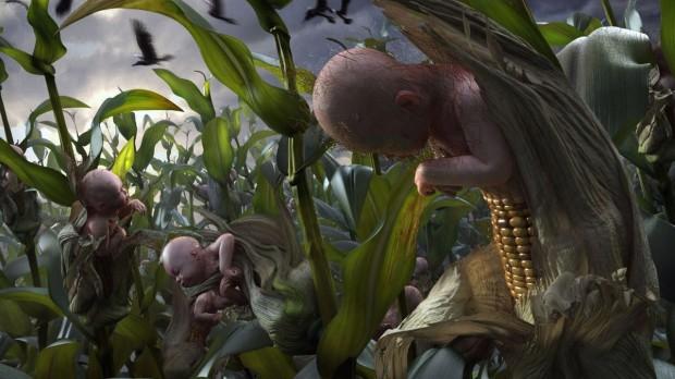 corn childred